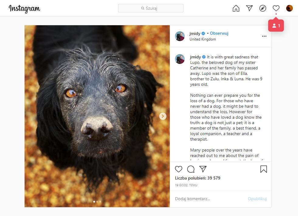 James Middleton na Instagramie
